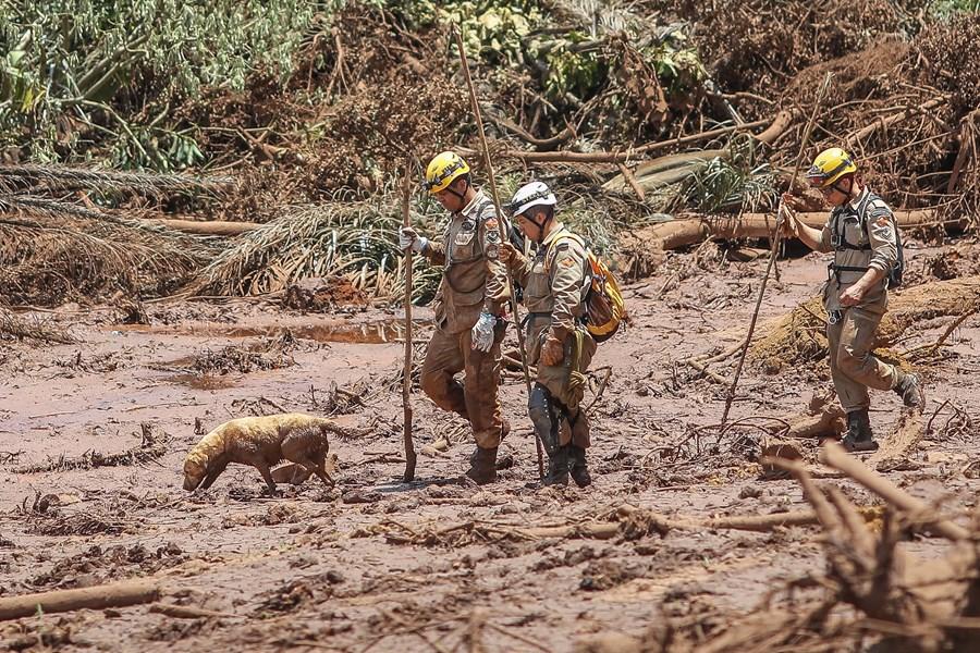 Vale: o que os analistas esperam para a ação da mineradora um ano após a tragédia de Brumadinho?