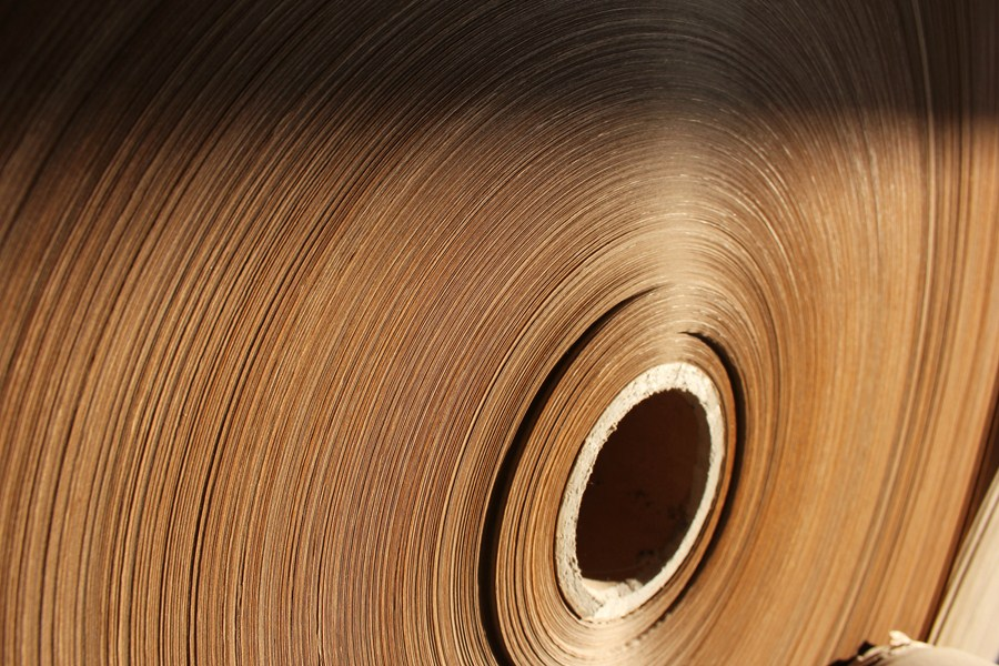 Setor de papel e celulose (Shutterstock)