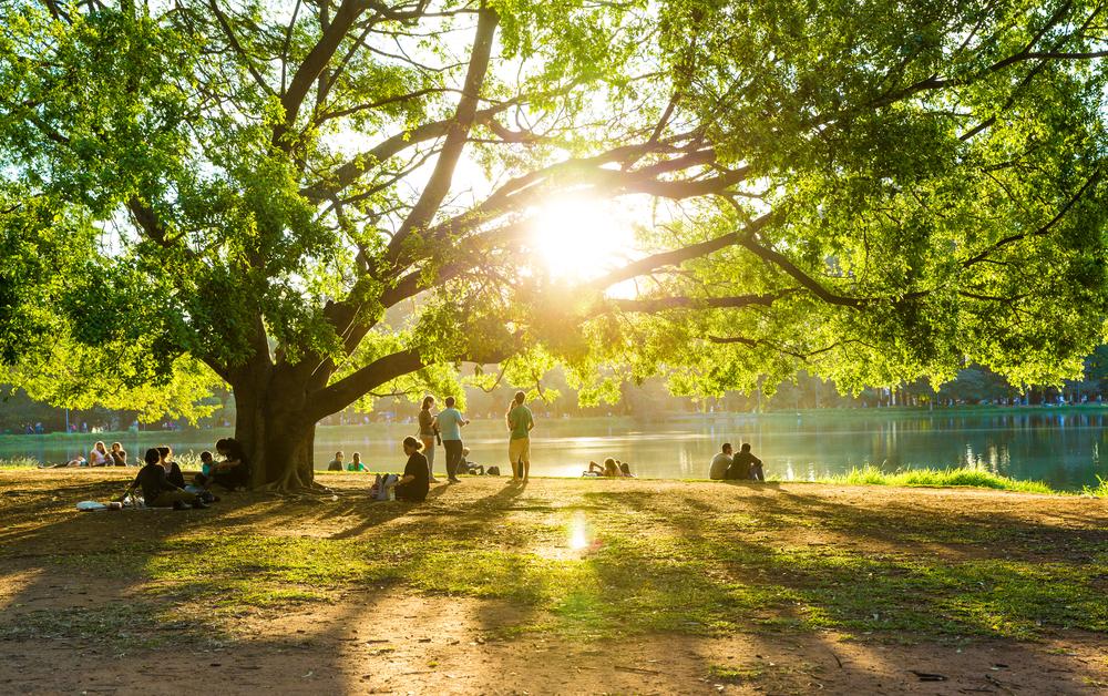 Doria estende quarentena no estado até 30 de julho; 70 parques da cidade de SP reabrem na segunda thumbnail