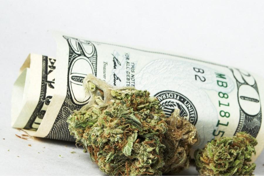 Crise de liquidez em setor de cannabis pode beneficiar Uruguai