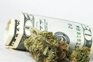 XP lança fundo de Cannabis com aplicação mínima de R$ 500