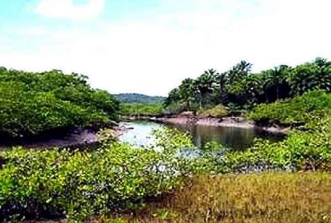 Ilha Vera Cruz