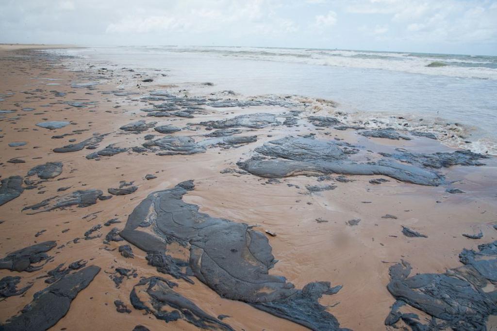 Praia do nordeste com óleo