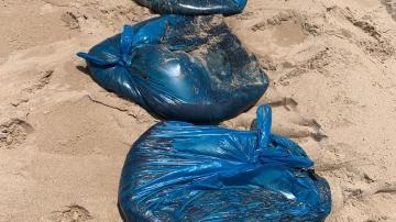 Limpurb atua para retirar novas manchas de óleo em praias de Salvador (SECOM/Salvador)