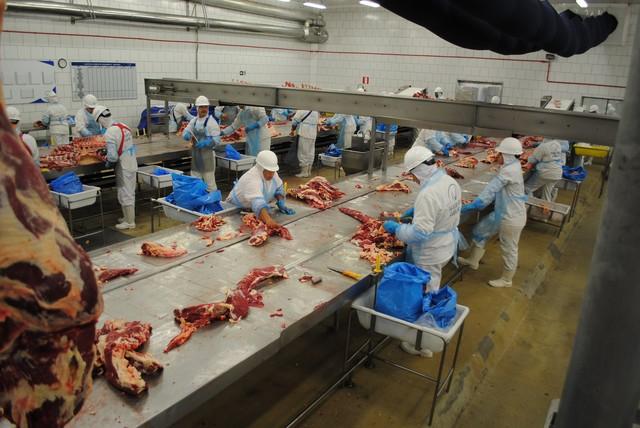 marfrig frigorífico carne abatedouro