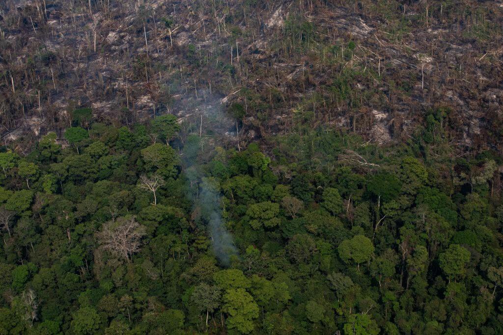 Fundos com US$ 3,7 trilhões alertam Brasil sobre desmatamento thumbnail