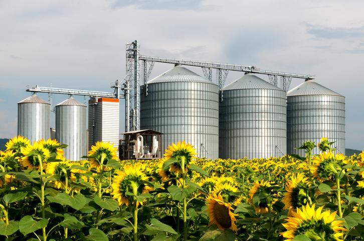 Bioeconomia, agronegócio