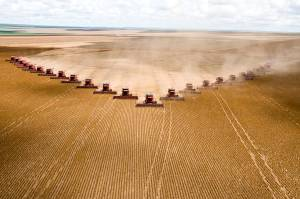 Plantação de soja em Mato Grosso; Agronegócio