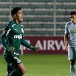 Bolivar v Palmeiras - Copa CONMEBOL Libertadores 2020