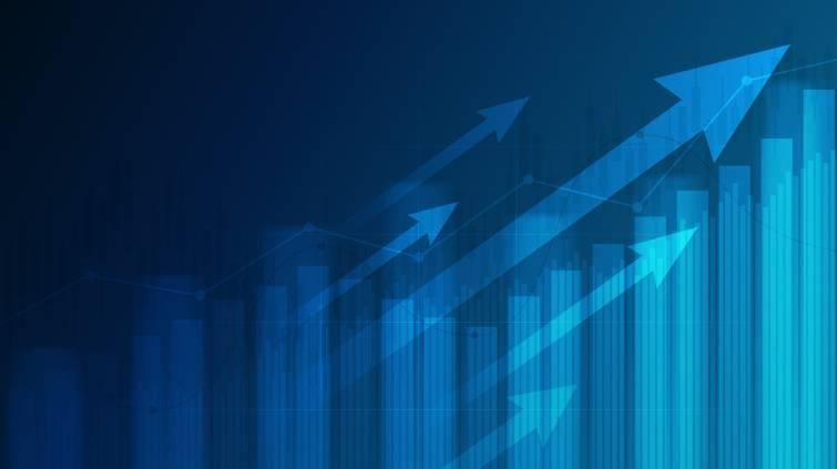 Fundos de investimento advisory