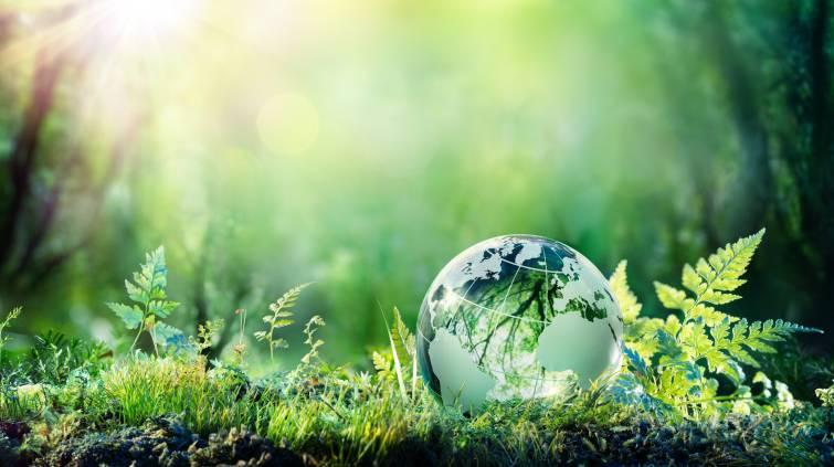 Meio ambiente ESG