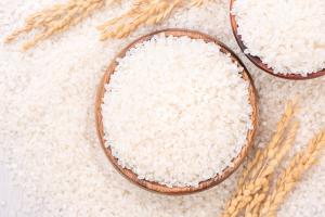 Arroz, cereais, safra, agricultura